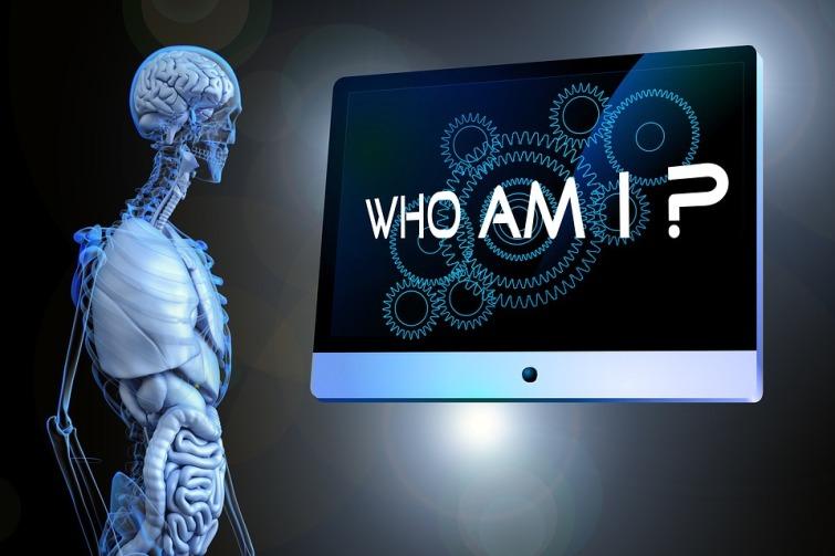 Human Sense Question Psychology Philosophy Anatomy